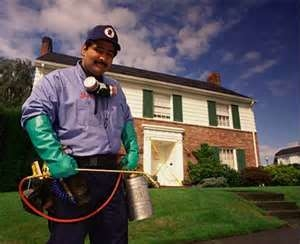 residential pest treatments in los angeles